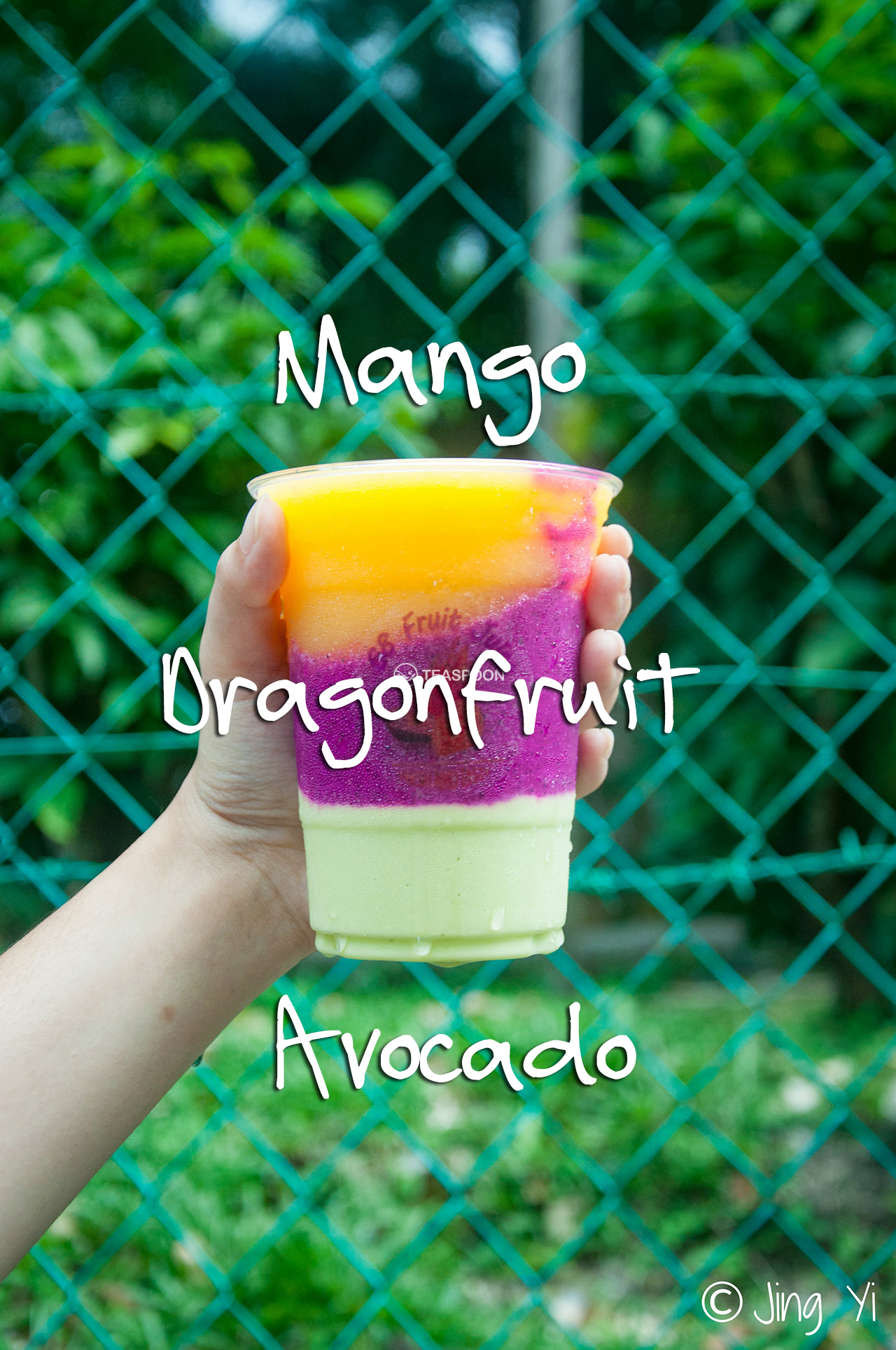 AVOCADO MANGO DRAGONFRUIT_1