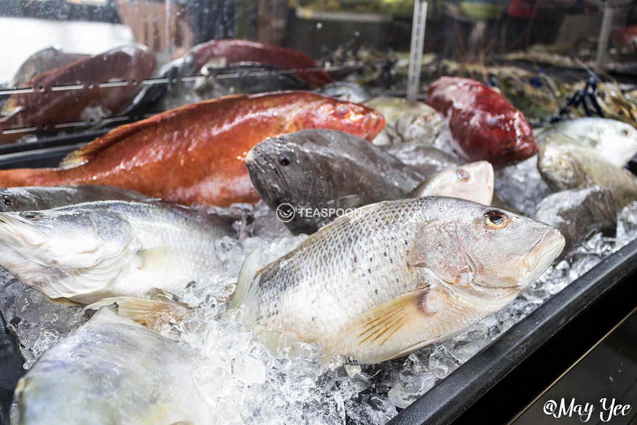 Seafood fresh (2)