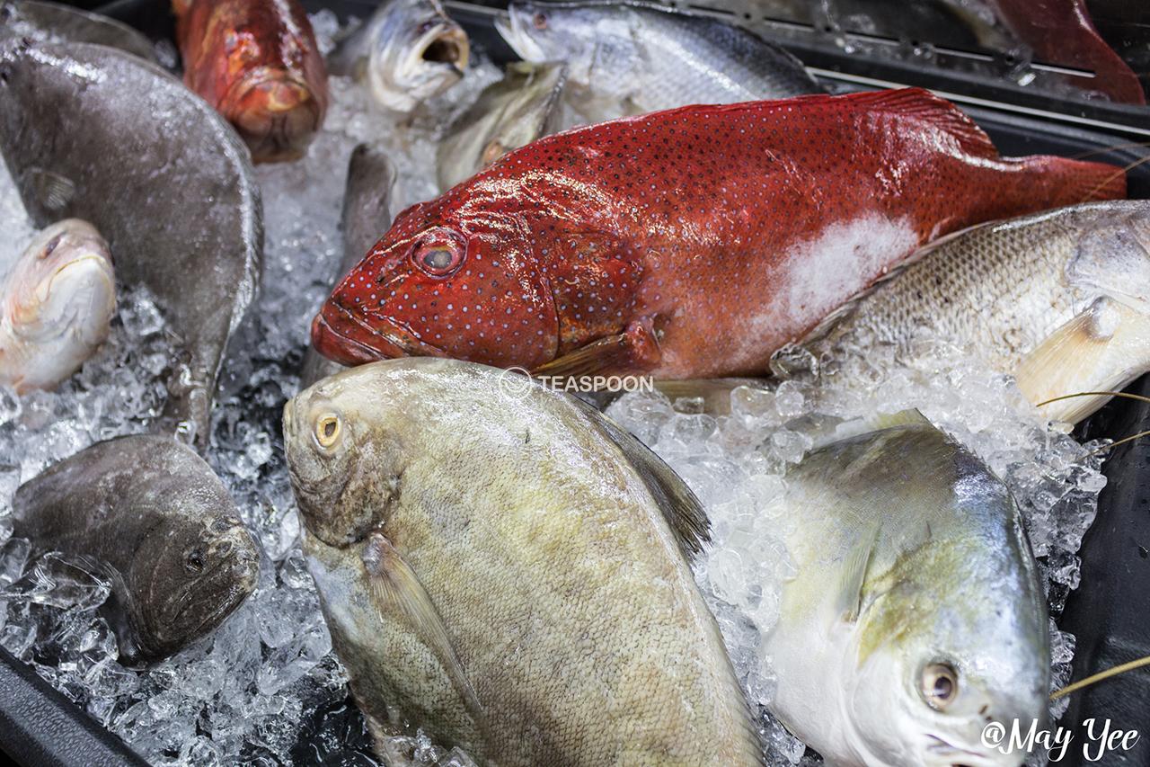 Seafood fresh (3)