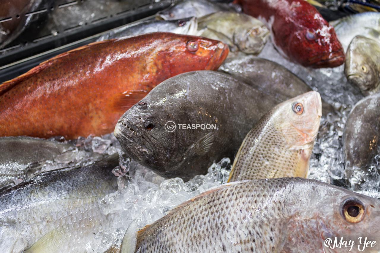 Seafood fresh (7)