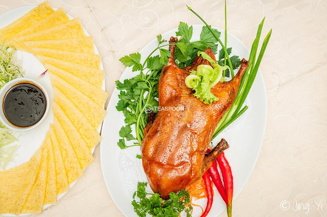 Duck (5)