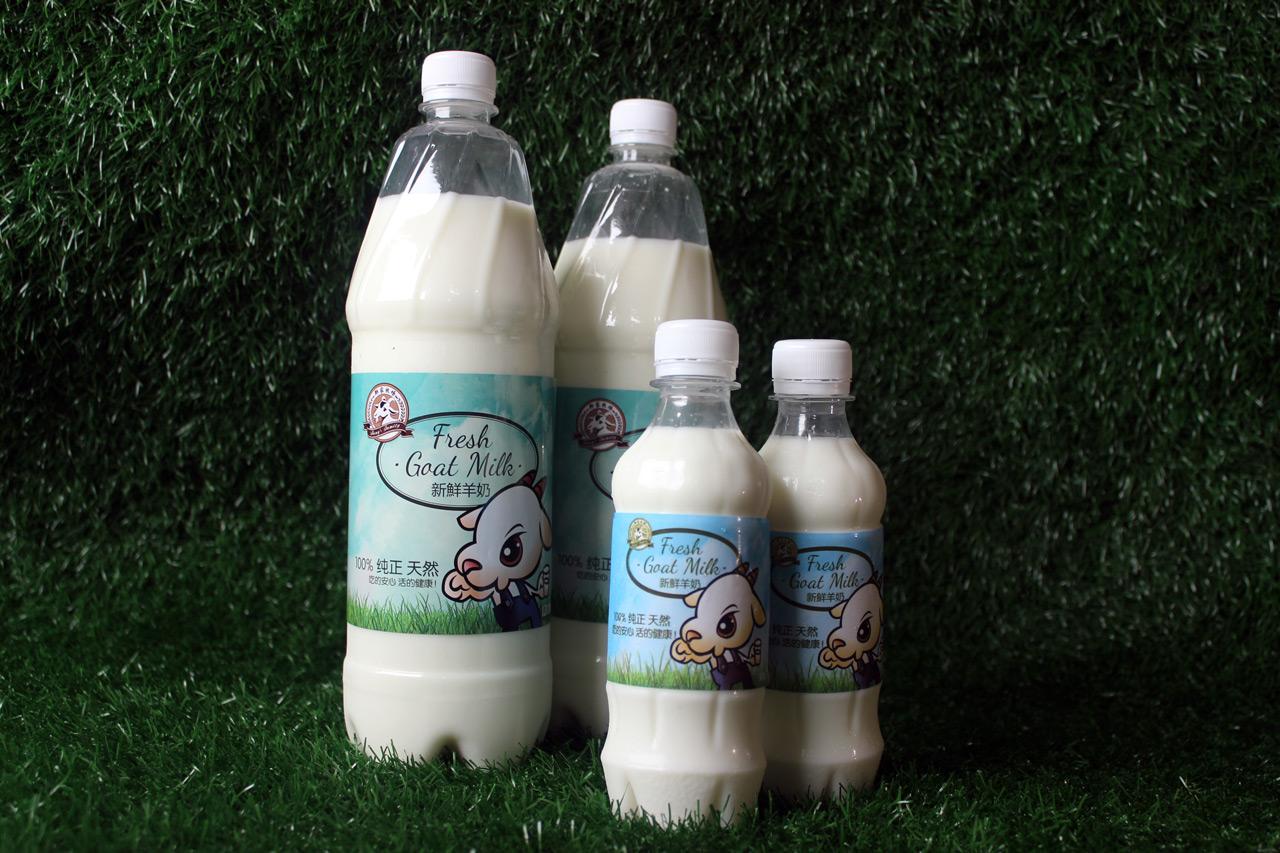 Goat-Milk-2