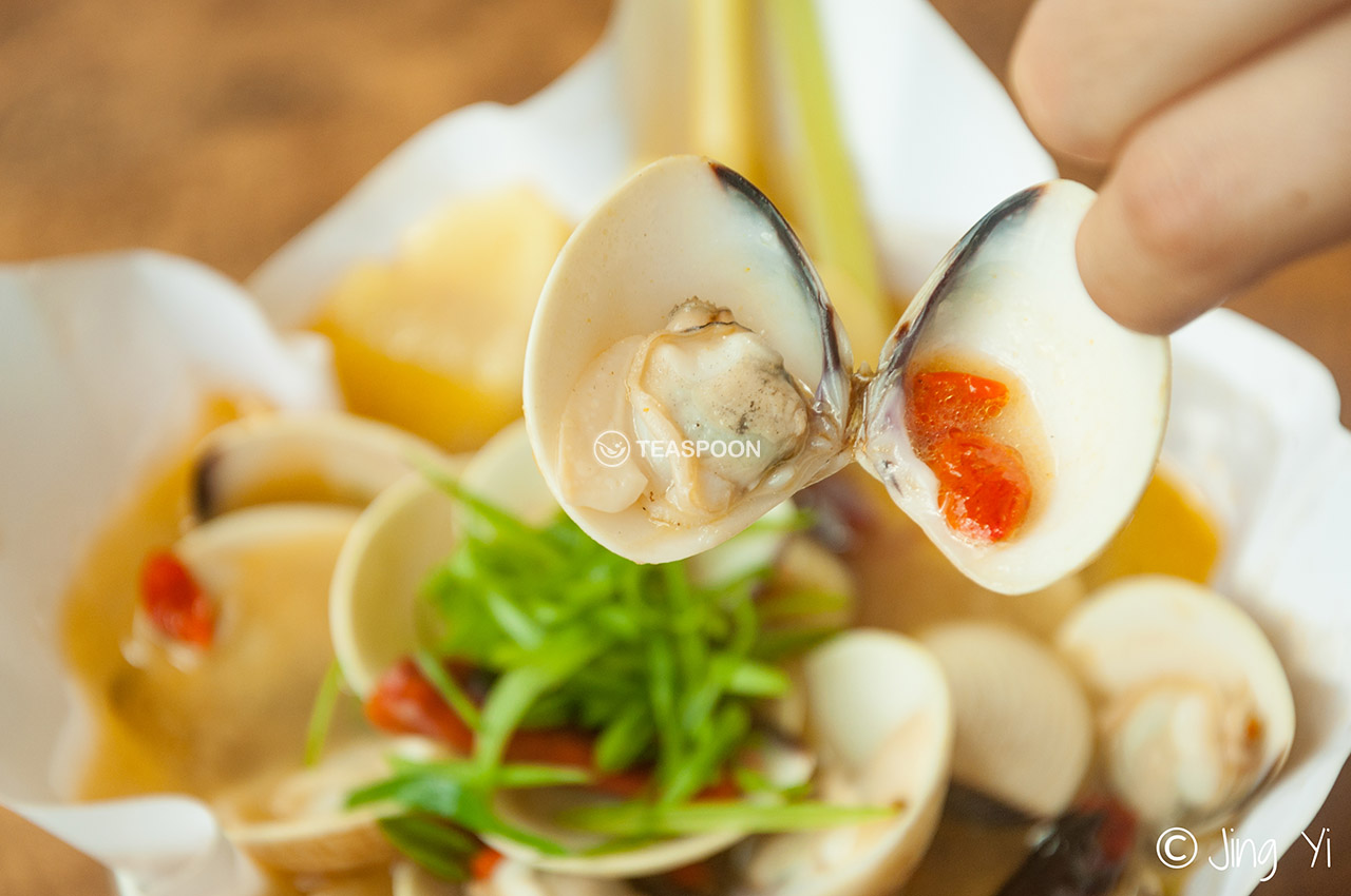 Soup clam (10)