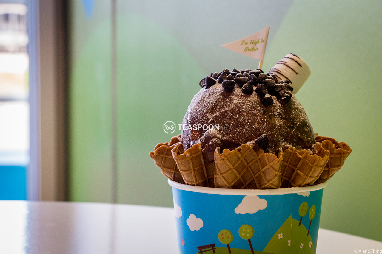 chocolate-ice-cream-(9)